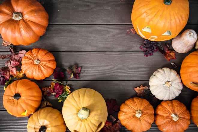 orange pumpkins on gray wooden surface