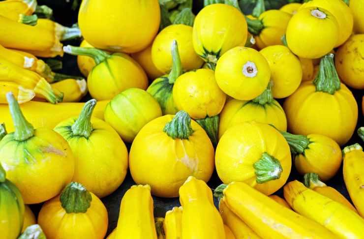 yellow round vegetables